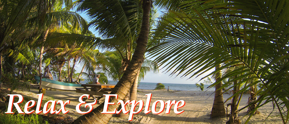 Relax on the beach under the coconut palms, looking out towards the Blue Hole or explore our island
